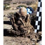 Bolivia researchers find two skeletons with abnormally elongated skull