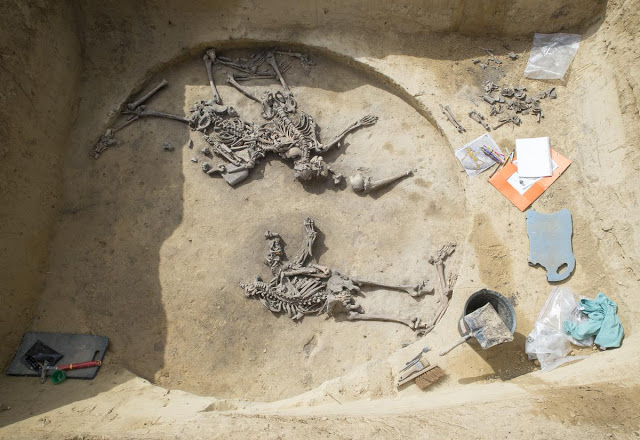 Mutilated Remains Surface From 6,000-Year-Old French Massacre