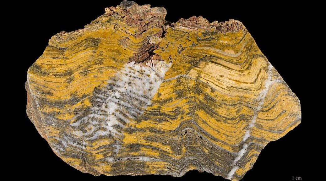 Oldest Evidence of Life on Land Found in 3.48 Billion-Year-Old Australian Rocks