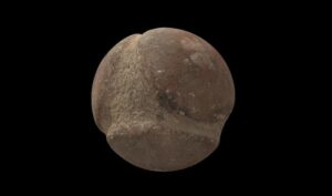 Some of the 3D images of the carved stone balls revealed previously unknown details about their design.