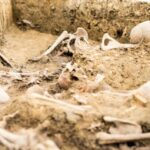 Archaeologists unearthed forgotten WWI war graves