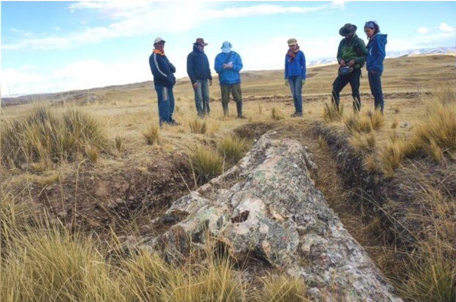 Giant 10-Million-Year-Old Fossil Tree in Peru Reveals Surprises About Ancient Past