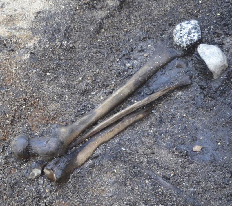 2,000-Years-Old Bone trove in Denmark tells story of 'Barbarian' battle