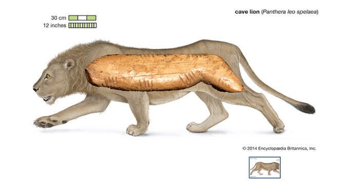45,000-year-old cave lion figurine unearthed at Denisova cave