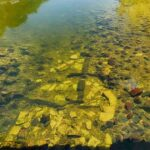 Remnants of Scotland's Oldest Surviving Bridge Found