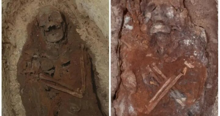 Ancient Egyptian 'city of the dead' discovery reveals 'elite' mummies, jars filled with organs and mystery snake cult