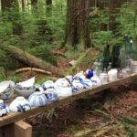 Hidden Japanese Settlement Found in Forests of British Columbia