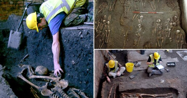 University of Cambridge: Remains of 1,300 scholars are found under building