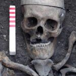 Skeletons found in London archaeology dig reveal noxious environs