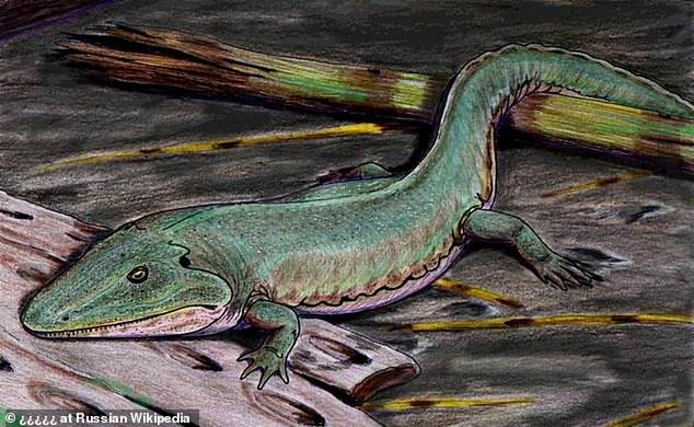 Earliest EVER footprints of amphibian found in Britain