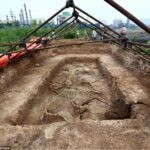 Remains of horses from 2,700 years ago found in Chinese family tomb