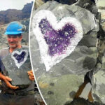 Stunning Heart-Shaped Amethyst Geode Discovered by Miners in Uruguay