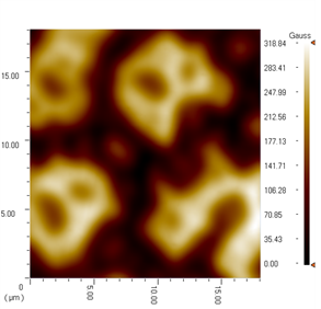 scanning hall probe microscopy result