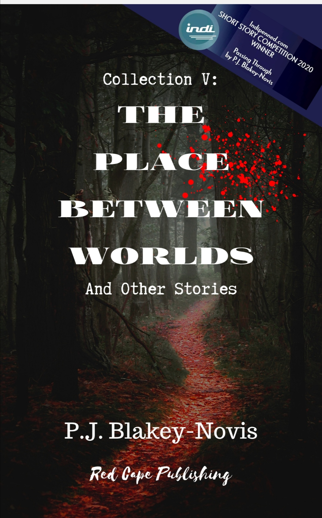 'THE PLACE BETWEEN WORLDS & OTHER STORIES' FROM P.J. BLAKEY-NOVIS