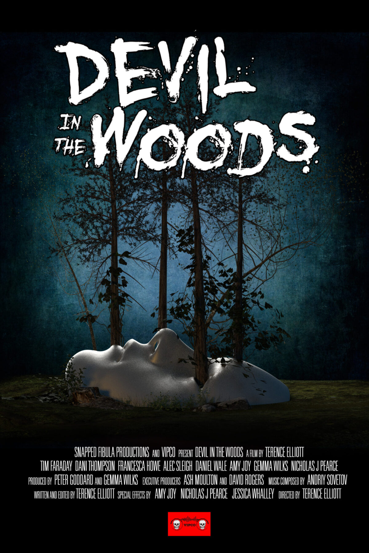 VIPCO to release Terence Elliott's Devil in the Woods to get DVD & Blu-Ray February 8th 2021