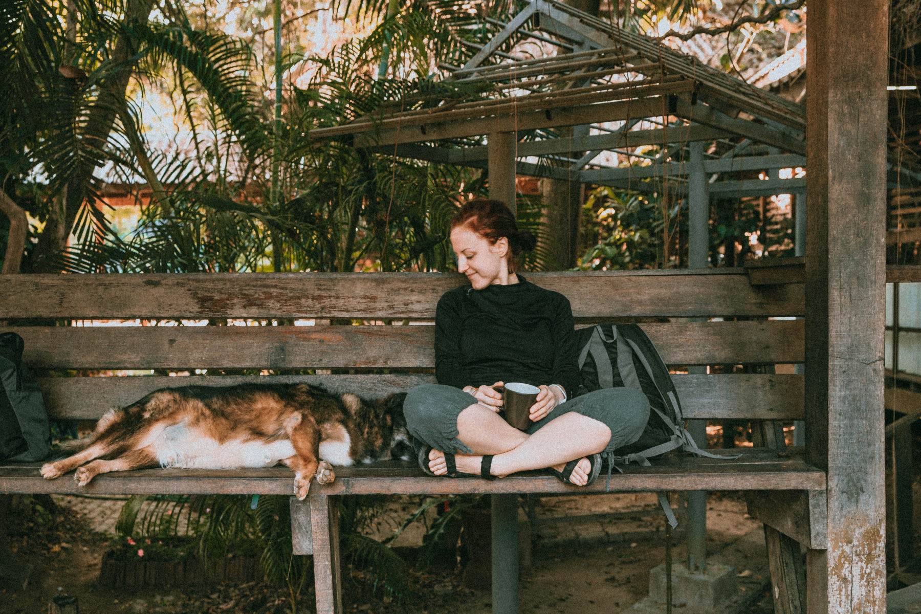 chilling next to sleeping dog and enjoying afternoon coffee elephant nature park thailand