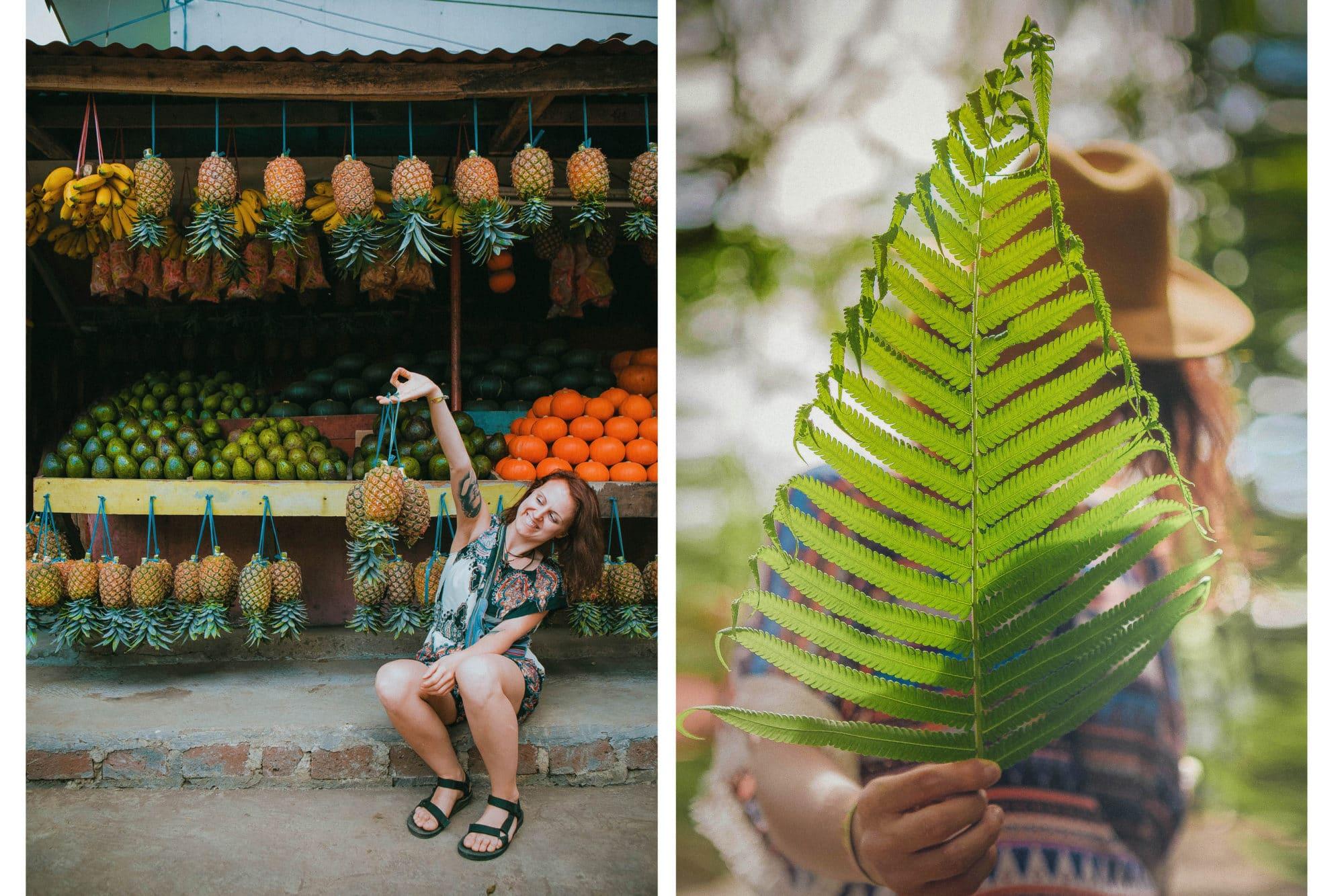 fruit stall bandung exploring leaf magic of plants hat colourful pineapple orange vegan