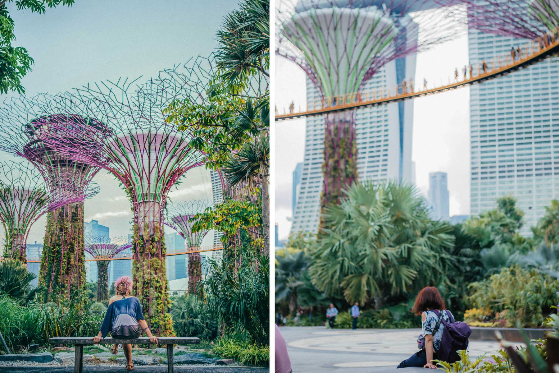 gardens by the bay singapore majestic lush green instalations world miracle