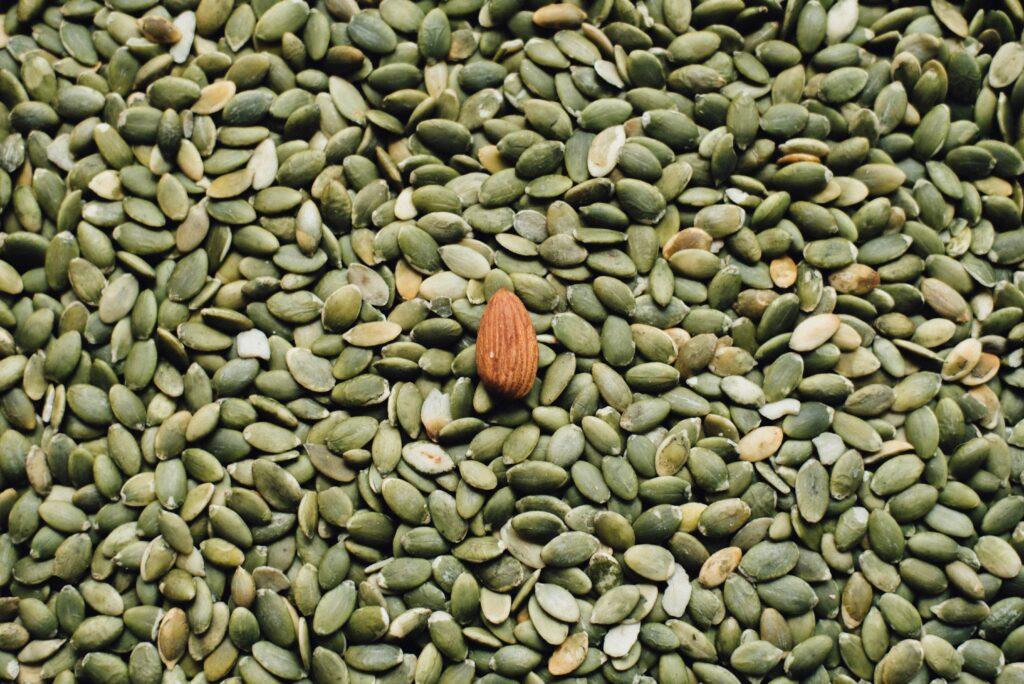 Nährstoffe vegan decken - Nüsse und Samen