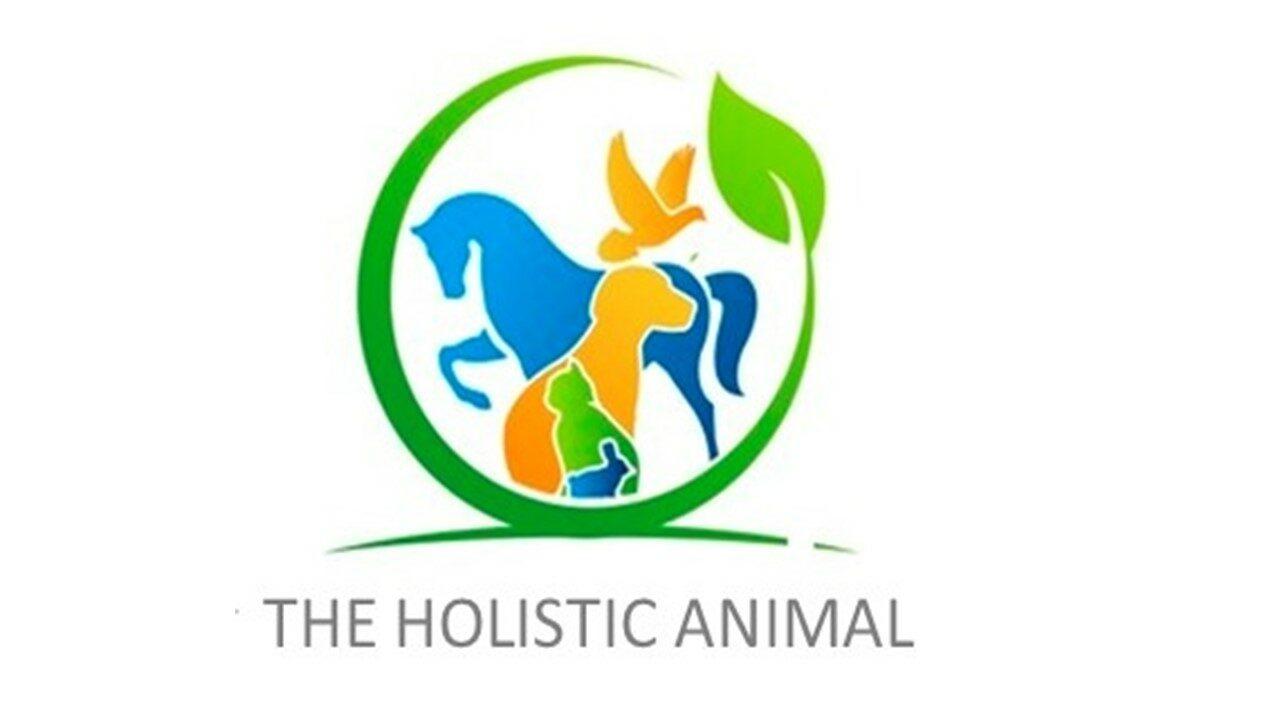 The Holistic Animal