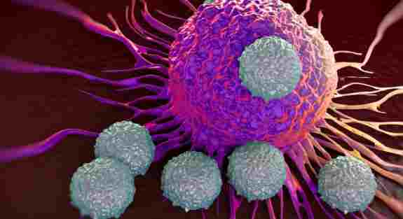 Molecule fight against cancer
