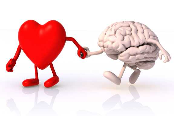 Brain And Heart Area 32