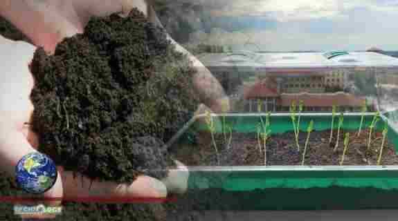 Engineers Can Bring Revolution By Developing Self-Watering Soil