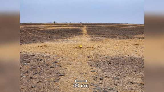 Geoglyph in India, you can see a vegetated line with sand and silts, which occurs during the dry season.