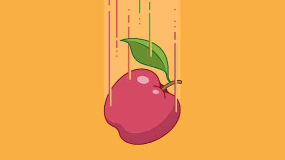 Apple fall due to gravity