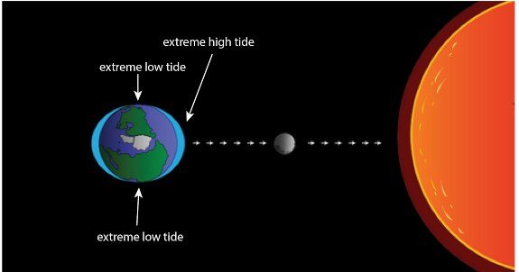 When gravitational pull of Sun & moon are combined, you get more extreme high & low tides. This explains high & low tides that happen about every two weeks.