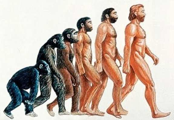 Six Changes That Prove That Humanity is still evolving