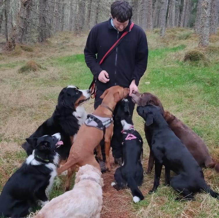 me&dogs