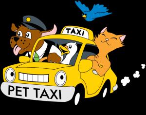 pet-taxi-cartoon-1-300x236