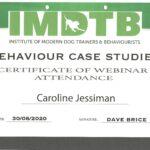 Caroline case studies