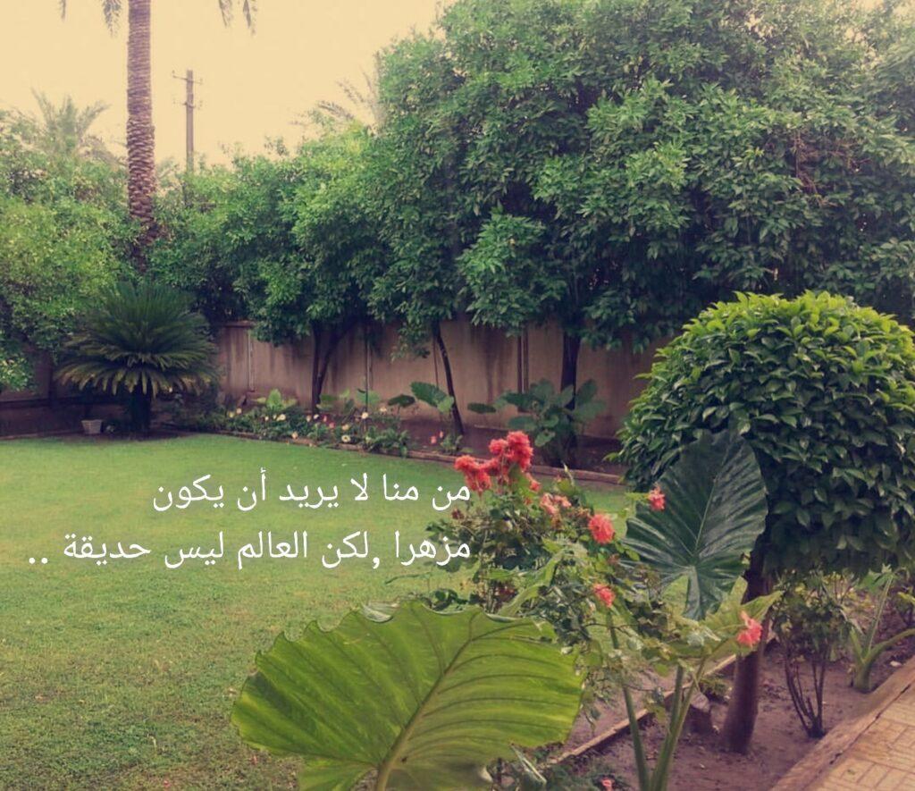 من منا لا يريد أن يكون مزهراً لكن العالم ليس حديقة