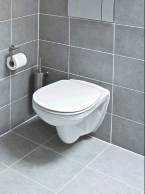 Wall Hung WC from Bathroom Warehouse, Winchester