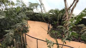 DCS Tropical House Marwell Zoo 1011