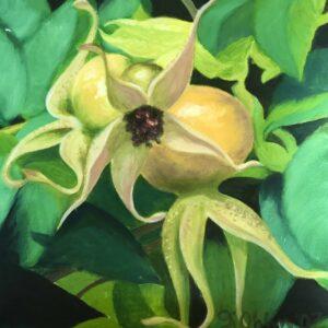 Paintings - Organics5