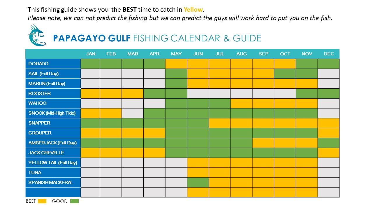 Papagayo Gulf Fishing Season