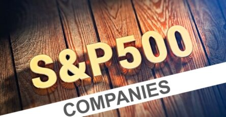 Companies in S&P 500