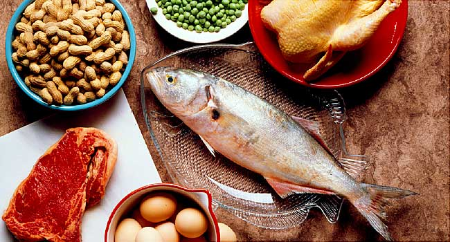 Dietary Importance of Protein