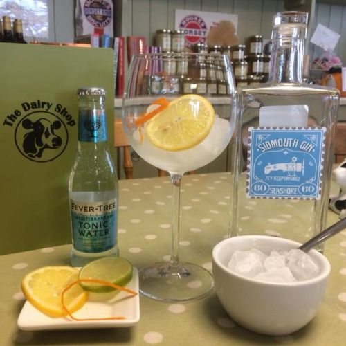 Sidmouth Gin and tonic water