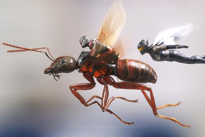صورة مراجعة فيلم ANT-MAN AND THE WASP