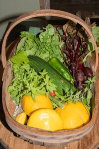 A basket of vegetables from our garden.