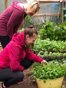 Two women inspecting the herbs in our garden.