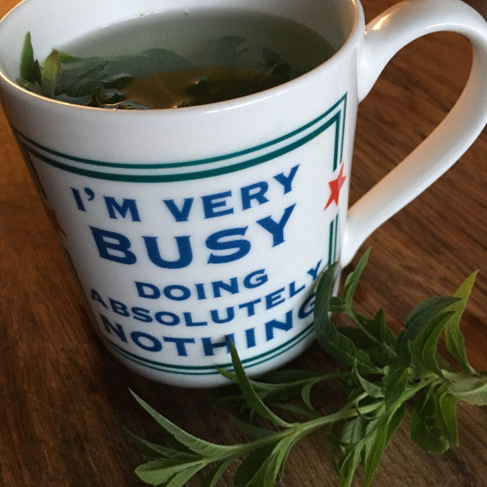A mug of herbal tea.