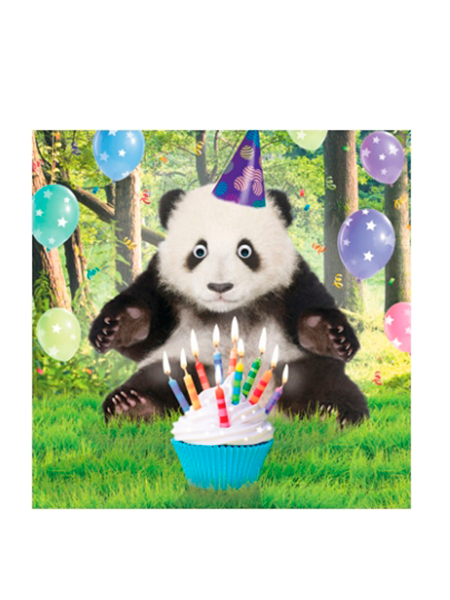 Birthday funky quirky unusual modern cool card cards greetings greeting original classic wacky contemporary art illustration fun vintage retro fluff googly eyes googlies tracks panda Percy party hat cake