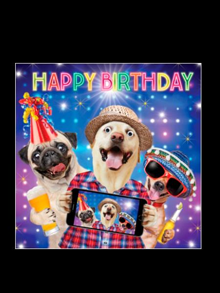 Birthday funky quirky unusual modern cool card cards greetings greeting original classic wacky contemporary art illustration fun vintage retro fluff googly eyes googlies tracks dogs selfie phone