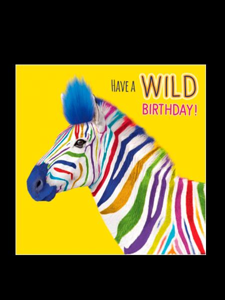Birthday funky quirky unusual modern cool card cards greetings greeting original classic wacky contemporary art illustration fun vintage retro fluff googly eyes googlies tracks wild multicoloured rainbow zebra