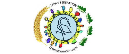 Thrive Federation Learning Without Limits